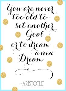 goal-setting-quote-aristotle